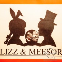lizz-meesor-welcome-wonderland_007