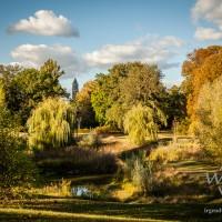 Herbst im Klosterbergegarten